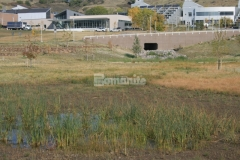 Partially concealed Grasscrete by Bomanite was installed on this site to minimize drainage issues while preserving the natural landscape and maintaining predevelopment hydrologic conditions.
